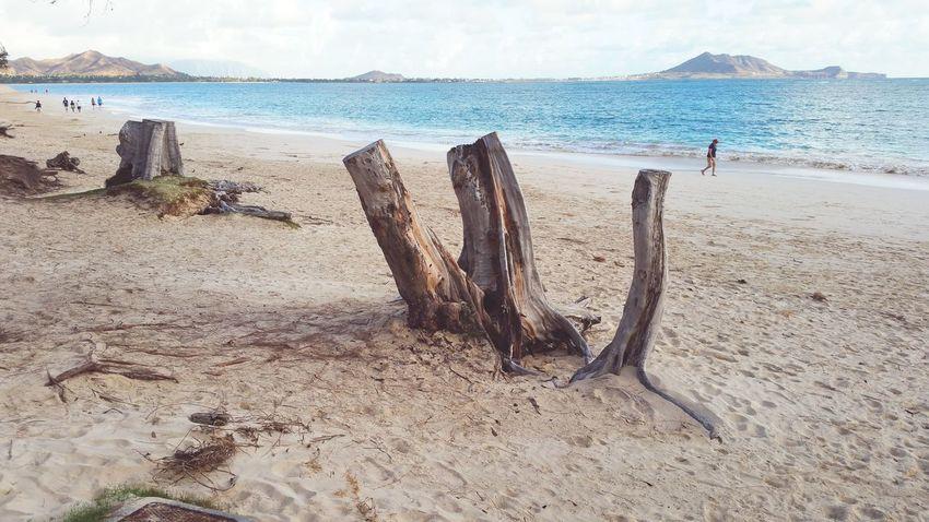 Its a beautiful day! Oahu, Hawaii Kailua Beach