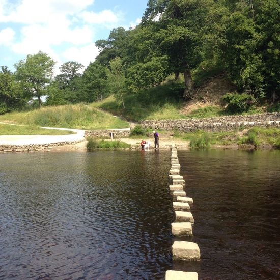Stepping Stones at Bolton Abbey BoltonAbbey River Riverside Riverbank River View Stepping Stones Yorkshire