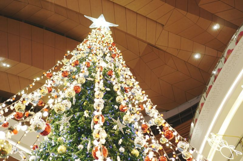 Low angle view of illuminated christmas tree on ceiling