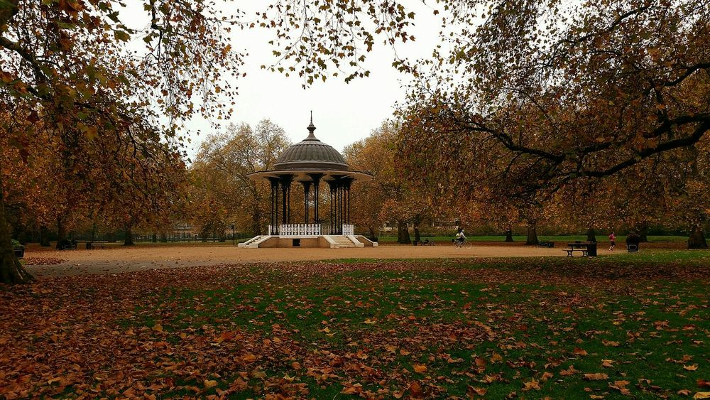 Bandstand in a London Park with Seasonal Colors Colours of Autumn Turning to Winter from Leaves Trees and Grass also people Exercising Before Work or On Way To Work Pmg_lon Shades Of Winter