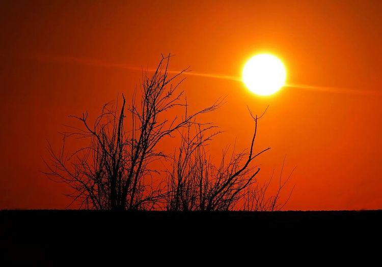 Sunset Sun Winter Belgium Noduwez Orange Sky