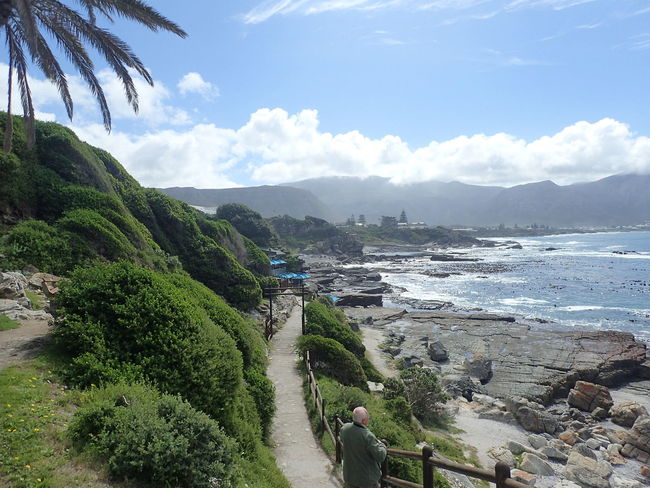 Morning in Hermanus, South Africa Africa Beach Beauty In Nature Garden Route Hermanus Morning Nature Outdoors Road Trip Sea Sky South Africa Tourism Travel Wanderlust Water Whale Watching