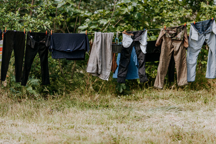 Clothing Clothesline Clothes Clothespin Clothes Rack Clothes Hanging Hanging Drying Sun Springtime Lifestyles Plant Laundry Grass Tree Nature Textile Day Land No People Pants Outdoors Housework Jeans