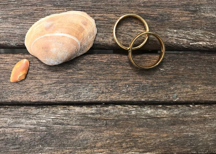 Wedding rings with seashells on old wood Wedding Invitation Hochzeit Hochzeitseinladung Norderney Copy Space Seashell Sea Shells Wedding Rings Wood Beach Wedding Wedding Still Life Wood - Material Table No People High Angle View Close-up Circle Brown Textured  Nature Directly Above