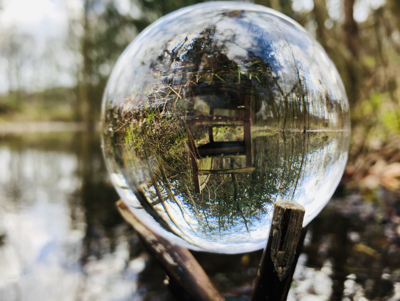 CLOSE-UP OF WATER BALL ON GLASS OF TREE