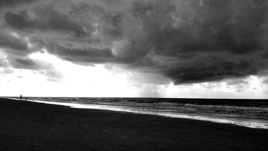 Contrast Blackandwhite B&w Backgrounds Ocean Clouds And Sky Walk On The Beach  Dog Walk Water Sea Beach Sand Low Tide Sky Horizon Over Water Cloud - Sky Thunderstorm Storm Cloud Dramatic Sky