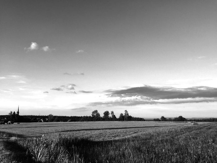Sundown Black White Taking Photos Relaxing Buchenberg Germany Summertime Fieldscape Romantic Sundown Blackandwhite Photography Black Forest Black & White
