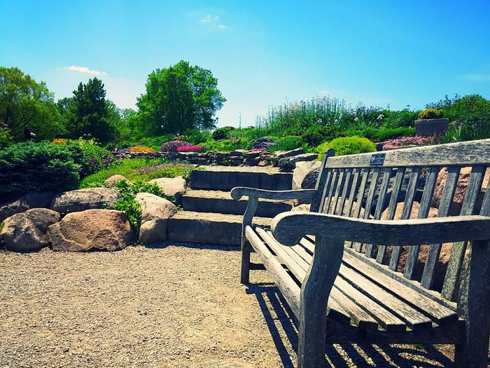 The Essence Of Summer Bench Rock Garden Steps Flower Place To Sit Path Nature Cox Arboretum Dayton Dayton, OH Dayton Ohio Ohio Ohio, USA Relaxing Showcase June The Colour Of Life