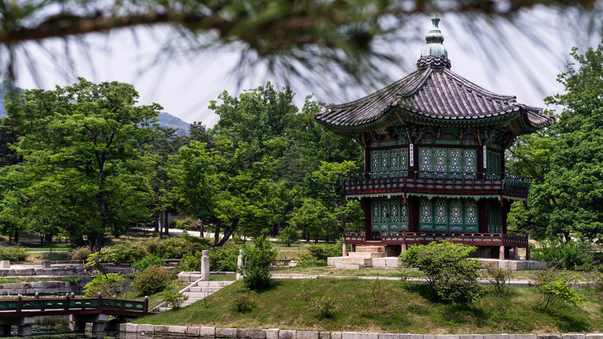 Architecture ASIA Asian Culture Building Exterior Built Structure Day Garden Korea Korean Traditional Architecture Nature No People Outdoors Pagoda Palace Palace Garden Peaceful View Place Of Worship Religion Roof Royal Seoul Spirituality Travel Destinations Tree Viewpoint