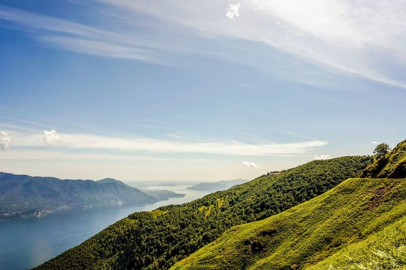 Scenic view of green landscape against sky