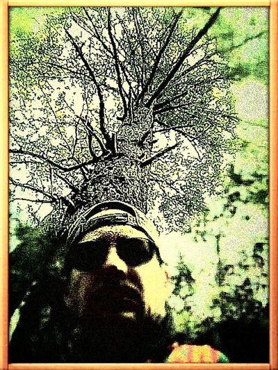 Selfie TreePorn