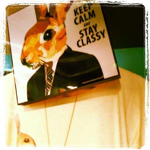 Rabbitdigitalblock Rabbit Stayclassy Keepcalm rabbitbatdress christmasgift uniquegifts oldtemplebar dublin artwork indipendentdesigner