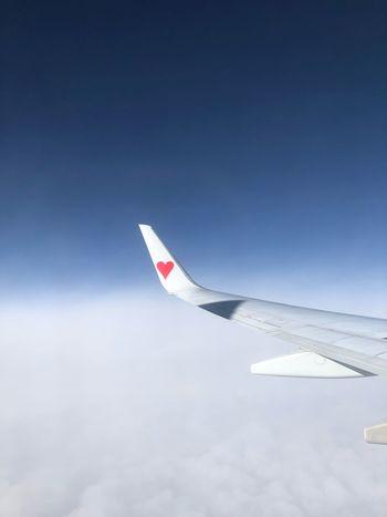 雲の上 Skymark Airlines Skymark Sky Airplane Flying Mode Of Transportation Air Vehicle Aircraft Wing Cloud - Sky