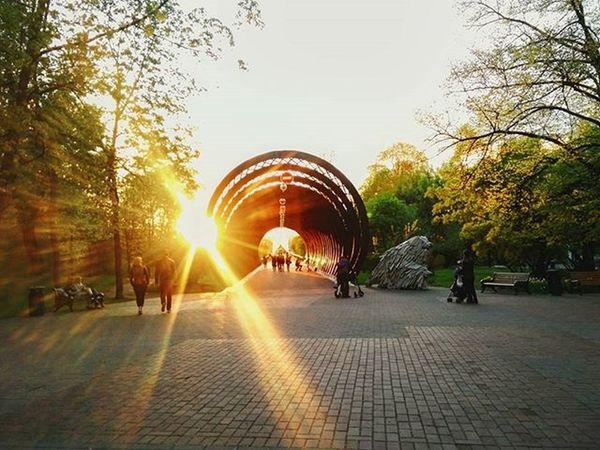Наконец-то я нашла идеальный путь домой: через парк к закату. ахмесяцмай Москварека Vscomoscow ПаркГорького Москва Vscomood Vscomsk Vscomoscow Vscorussia Москварека весна Russia Vscodaily Spring май Закат Vscosky Skyporn Beautifulsky Sunset