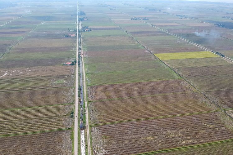 Field Agriculture Landscape Rural Scene Farm Land Aerial View Environment Scenics - Nature Tranquil Scene Growth No People Day Patchwork Landscape Nature High Angle View Tranquility Beauty In Nature Plant Pattern Outdoors Plantation