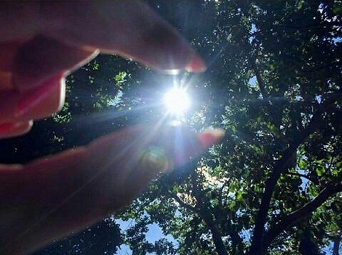 Raiosdesol Belezanatural Paz ✌ Multicor