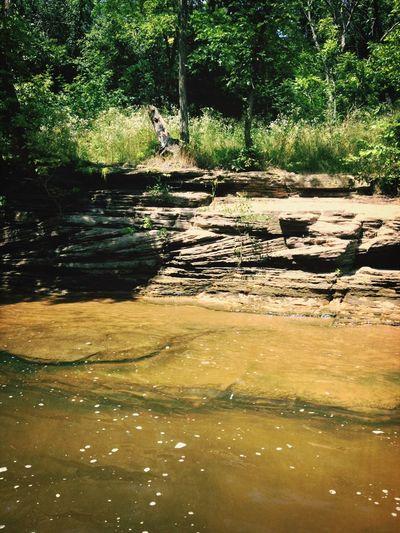 Duck tours. Enjoying Life Nature Eyemnaturelover