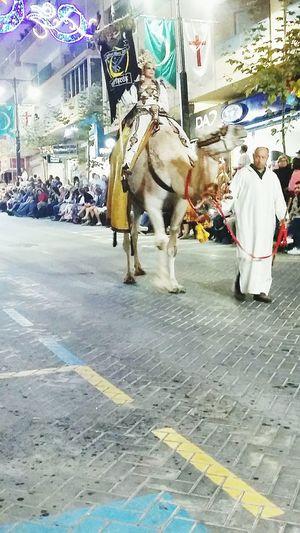 Camel and men Illuminated People Performance