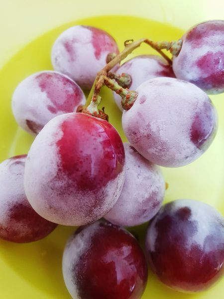 frozen grapes for summer snack... Grapes Frozen Fruit Snacks! Snack Time! Summer Red Close-up Sweet Food Food And Drink Red Grape Vine Ripe Vine - Plant