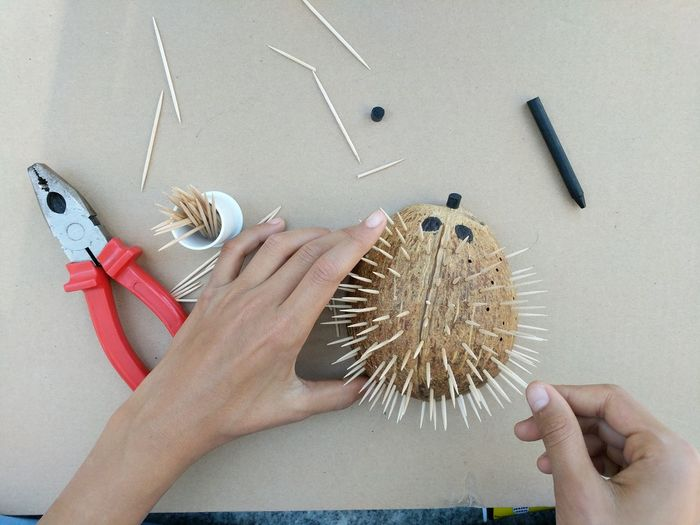 Hands Holding Coconut With Toothpicks On Table