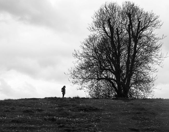 Lost In The Landscape Solitude And Silence Silhouette Candid Photography TreePorn EyeEmNewHere Beauty In Nature One Person Standing People One Man Only Cloud - Sky Only Men Sky Outdoors Full Length Adults Only Nature Adult Day Tree