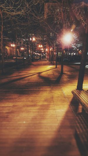 Night walk in Portlandia Boardwalk Wood Night Park Quiet Moments First Eyeem Photo Spooky Trees Light And Shadow