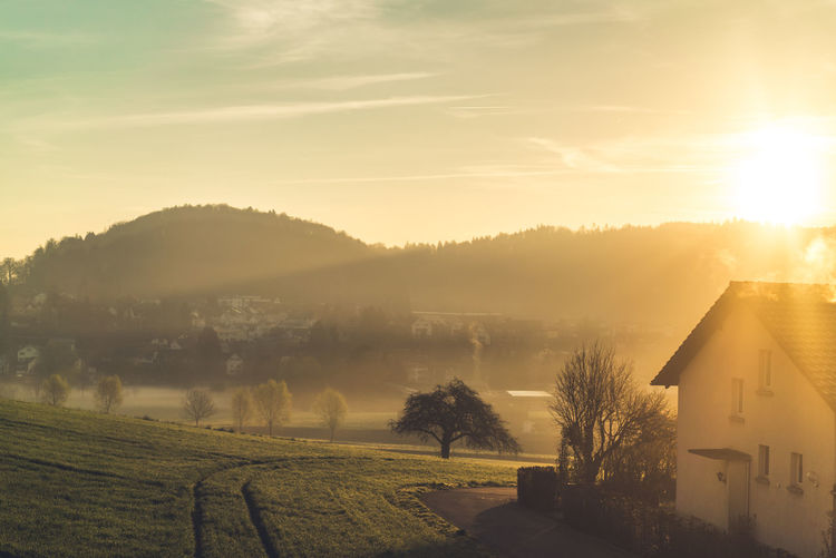 Shot this on the train from Zurich to Interlaken one early morning. Field Golden Hour House Nature Outdoors Rural Sun Sunlight Sunrise Tree First Eyeem Photo