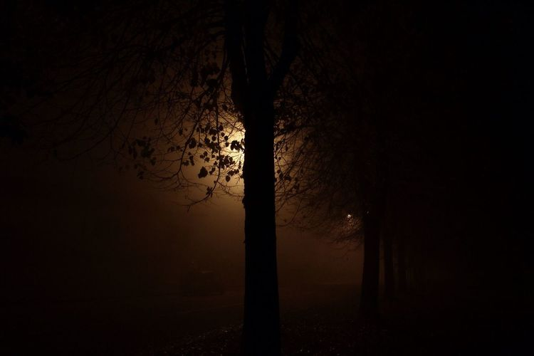 """""""Let be Ispired by the lights"""" Streetphotography Night Nightphotography Halloween Atmospheric Mood Fear Anxiety  Landscape"""