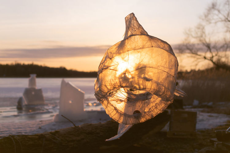 Transparent paper sculpture of a fish backlit by sunset