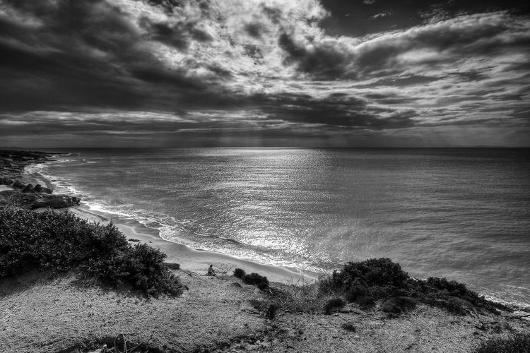 Nature Beach Beauty In Nature Blackandwhite Bnw Cloud - Sky Day Horizon Over Water Landscape Monochrome Nature No People Ocean Outdoors Sand Scenics Sea Shore Sky Storm Cloud Tranquil Scene Tranquility Tree Water Wave