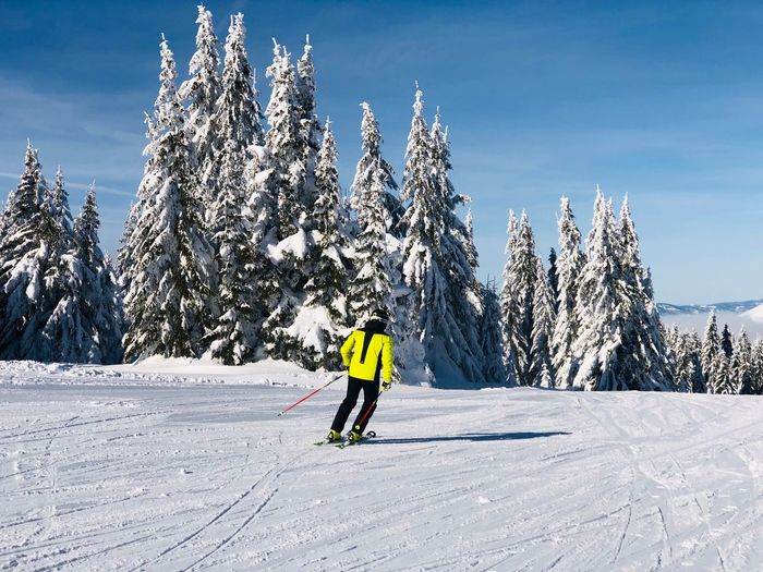 Skier on the slope on a day with clear blue sky Outdoors Ski Wear Sunny Pine Tree Coniferous Tree Evergreen Tree Forest Blue Sky Resort Mountain Movement Slope Motion Skiing Skier Snow Winter Cold Temperature Real People Tree Winter Sport Leisure Activity One Person Sport Holiday Vacations Full Length Beauty In Nature Ski Holiday White Color