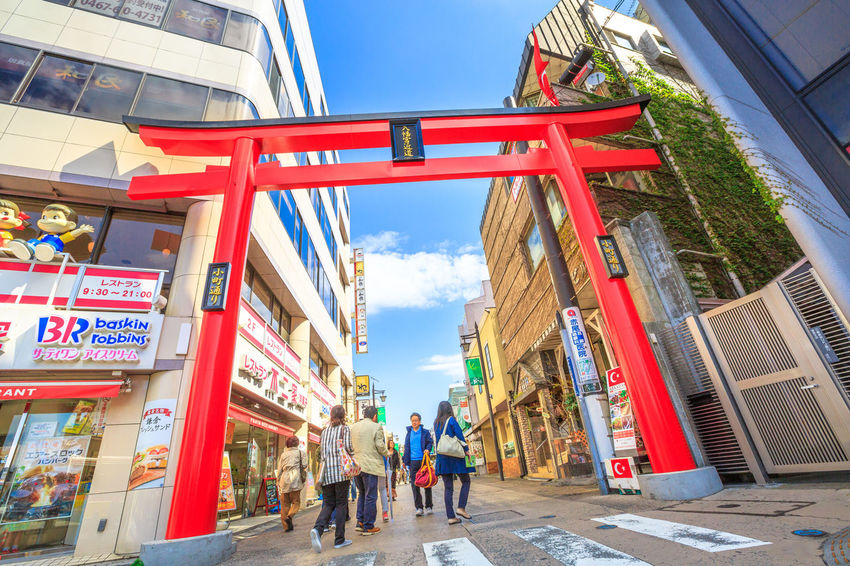 After Torii gate begins the Dankazura, a pathway flanked by cherry trees leading to Tsurugaoka Hachiman shinto sanctuary in Kamakura, Japan. Wakamiya-oji street offers spectacular landscapes in spring Kamakura, Japan - April 23, 2017: Komachi-dori Street, the shopping street outside Kamakura station. The popular touristic street is in ancient city of Kamakura with historic restaurants and stores. Dankazura Japan Japan Photography Japanese  Japanese Culture Japanese Temple Kamakura Kamakura Daibutsu Kamakura Japan Kamakura Station Path Road Shrine Shrine Of Japan Shrines & Temples Shrines And Temples Statue Wakamiya-Oji WakamiyaOji Adult Architecture Building Building Exterior Built Structure City Communication Day Group Of People Incidental People Kamakura Sea Lifestyles Men Outdoors Pathway People Real People Sky Street Temple Text Wakamiya Walking Women