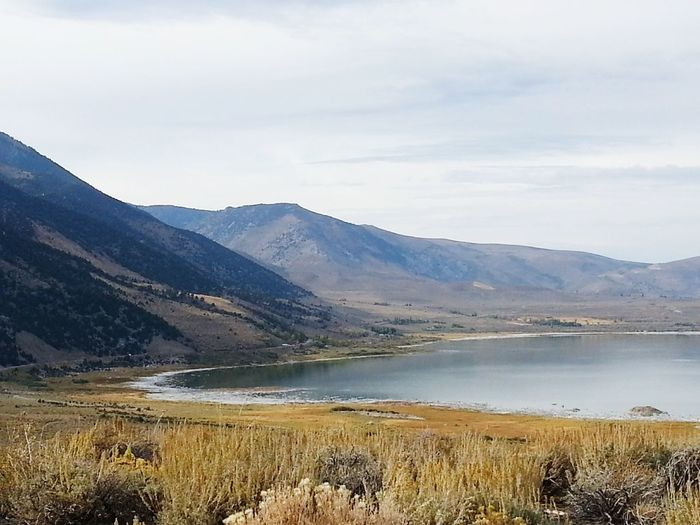 Mono Lake USA Nature Hillside Lakeshore SaltLake Beauty In Nature