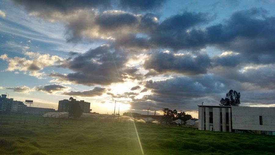 Bogota,colombia. University University Campus Universidad Universidad Nacional De Colombia UniversidadNacionaldeColombia Arboles , Naturaleza Cielo Cielo Y Nubes  Cielomania Cielo Y Sol