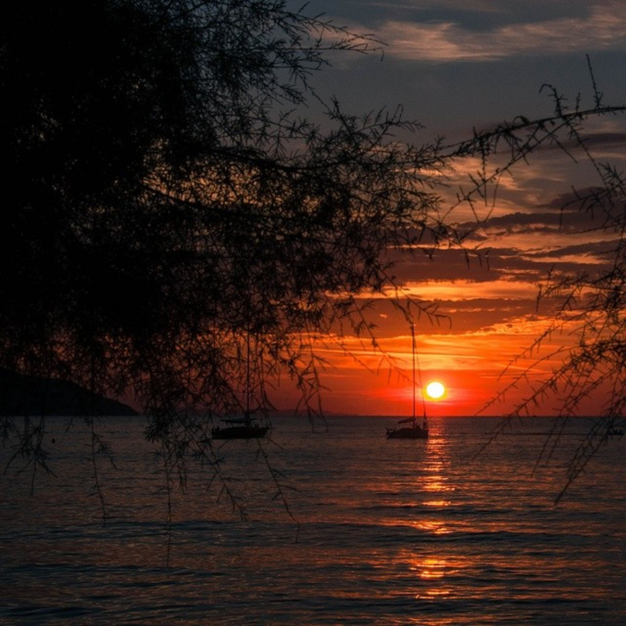 sunset, sun, water, tranquil scene, tranquility, scenics, orange color, beauty in nature, reflection, sky, silhouette, tree, nature, idyllic, lake, waterfront, sunlight, rippled, outdoors, no people