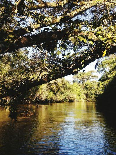 From a raft, at Iguazu National Park Iguazu 🌈🔆, Argentina💘. No People Nature Boat Trip