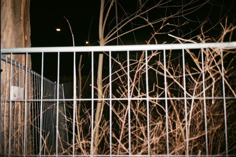 Close-up of metal fence against illuminated building