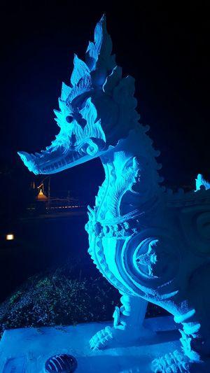 Blue Illuminated Night Black Background Chiang Mai Night Safari Statue Dragon Carved Stone S6photography Mobilephotography Mobile Photography Shadow And Light Blue Light Shadowplay