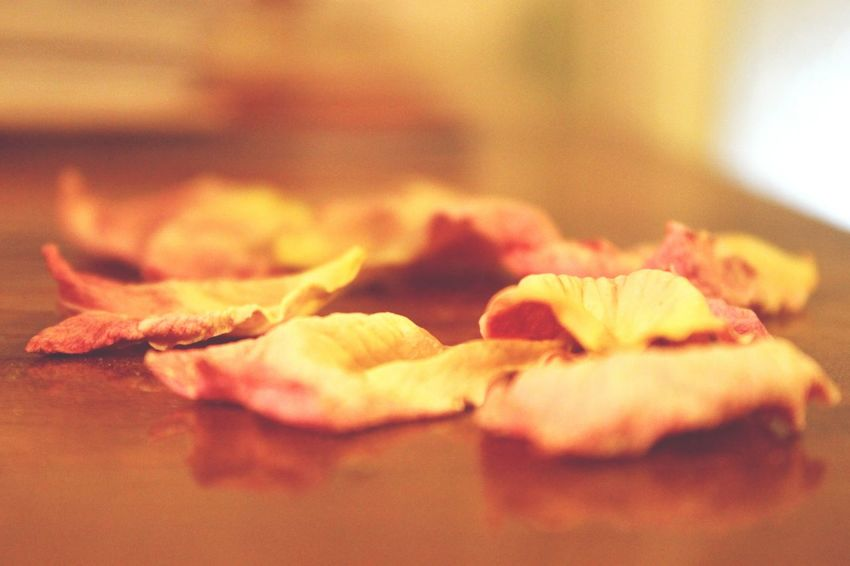 Dried rose petals Dry Rosé Dry Flower  Dead Flowers Petal Rose Petals Pink Rose Pink Color Table Close-up Dried Dried Plant