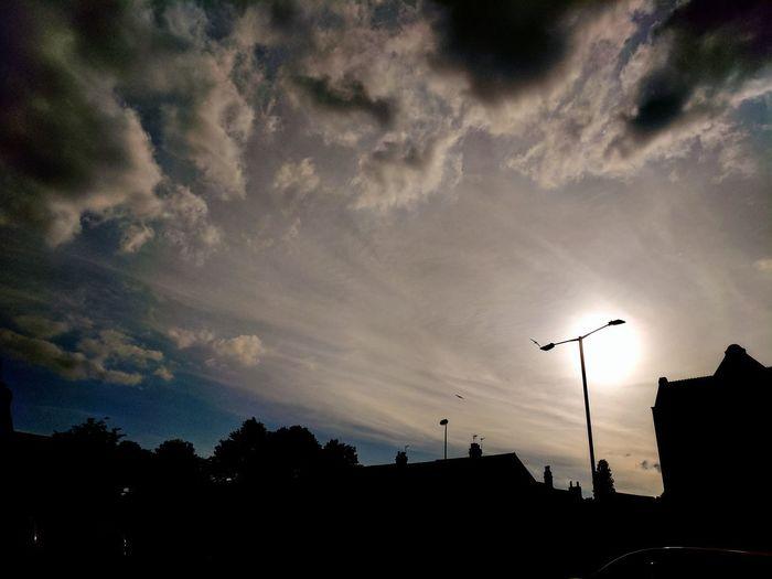 Silhouette Sunset Night Cloud - Sky Outdoors No People City Tree Sky Bird