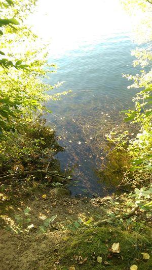 Water Tranquility Non-urban Scene Lake