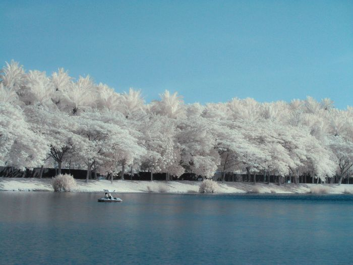 Infrared Landscape Shootermag Totally Worth It