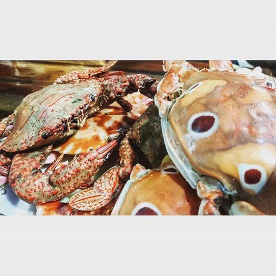 螃蟹季 三點蟹 花蟹 石蟳