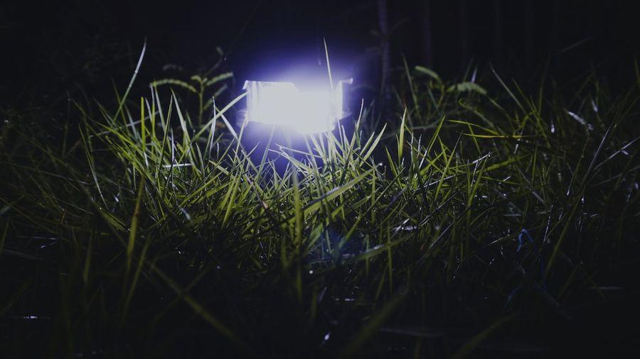 Close-up of illuminated lights on field at night
