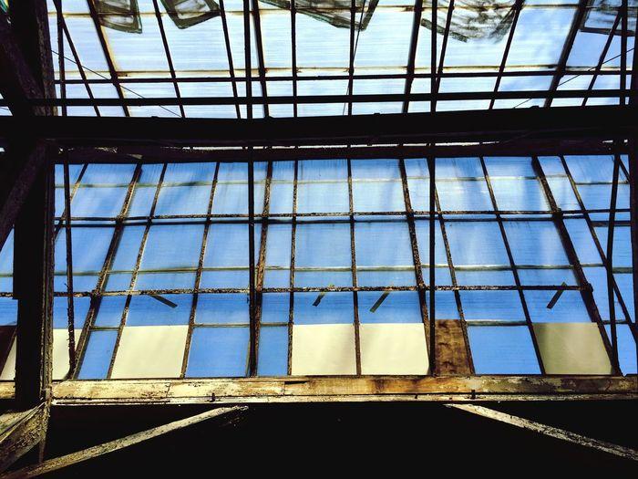 Window Sky Warehouse
