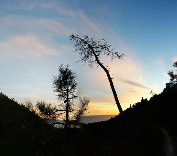 Tramonto Liguria natura trekking altavia Sunset Silhouette Nature Outdoors Landscape Sky Beauty In Nature Tree No People Vacations First Eyeem Photo