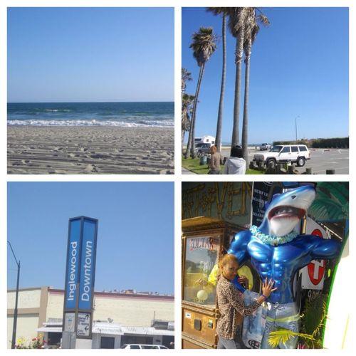 Missing Cali