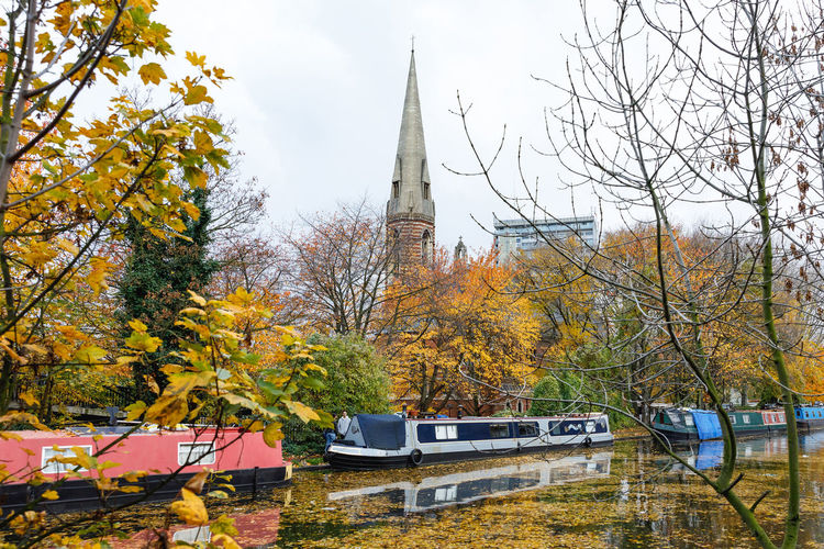 Autumn in London Tree Plant Architecture Autumn Built Structure Mode Of Transportation Nature Building Change Car Motor Vehicle Building Exterior Transportation No People Day Tower Belief Place Of Worship Religion Branch Outdoors Spire  Autumn London Travel Destinations Autumn Mood