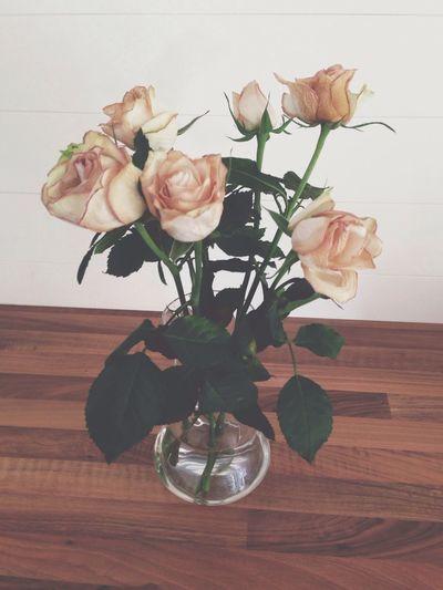Mammas döda rosor...