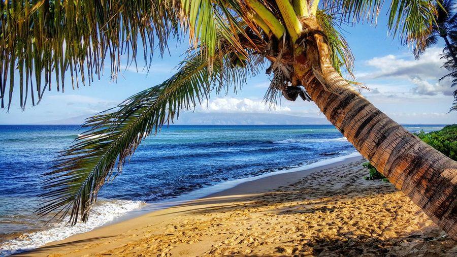 Beaches of